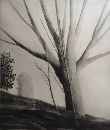 Robert Kipniss - Dry Points - Hilltop III