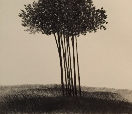 Robert Kipniss - Dry Points - Small copse in a field