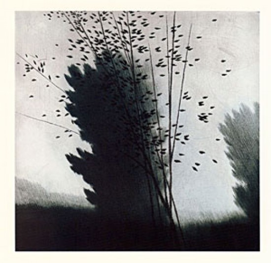 Robert Kipniss - Dry Points - Breezes