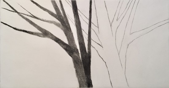 Robert Kipniss - Dry Points - Shadow trees