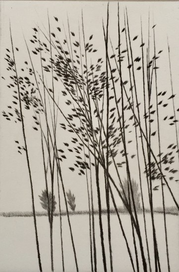 Robert Kipniss - Dry Points - Windbreak