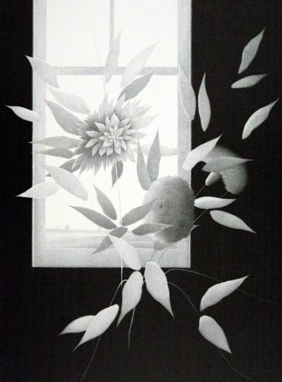 Robert Kipniss - Lithographs - Studio Flowers
