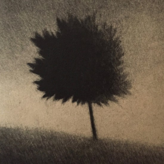 Robert Kipniss - Mezzotints - Hilltop tree