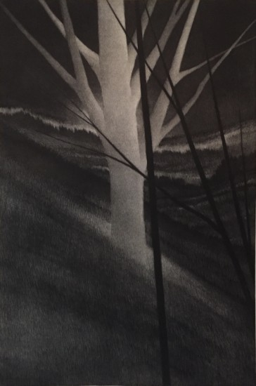 Robert Kipniss - Mezzotints - Hillside w/ pale tree