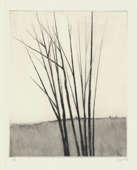 Robert Kipniss - Mezzotints - Meadow w/six trees