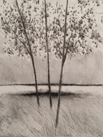 Robert Kipniss - Mezzotints - Three trees, late afternoon (Rain at noon)