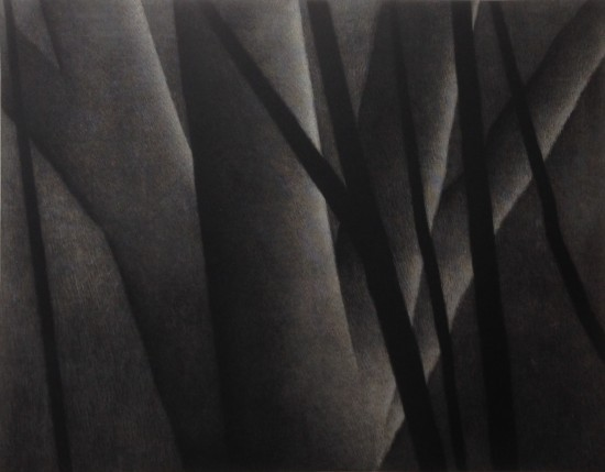 Robert Kipniss - Mezzotints - The life of trees at night II