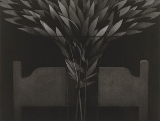 Robert Kipniss - Mezzotints - Chair and leaves