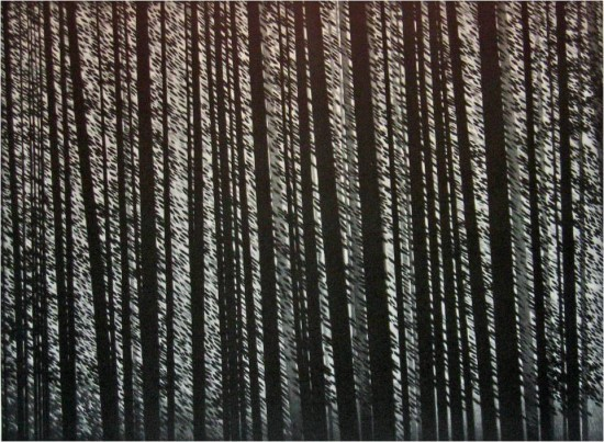 Robert Kipniss - Mezzotints - Forest murmurs