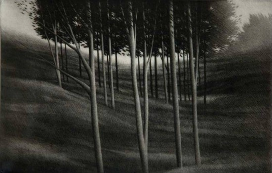Robert Kipniss - Mezzotints - From White Hollow Road
