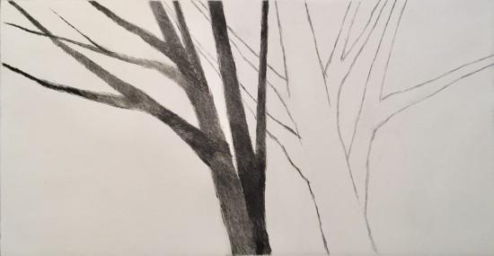 Robert Kipniss - Mezzotints - Shadow trees