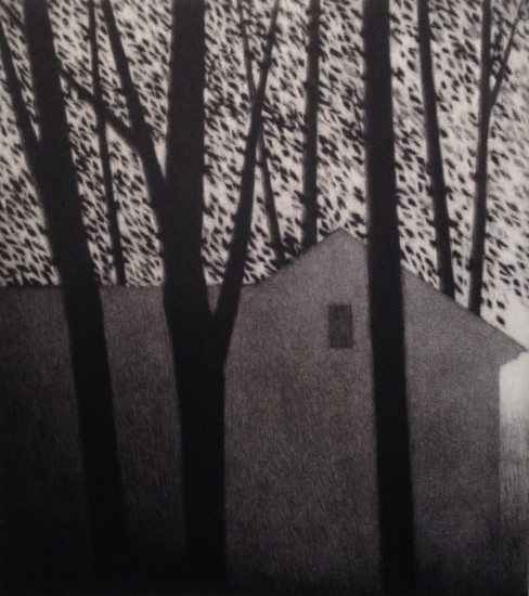 Robert Kipniss - Mezzotints - House and leaves