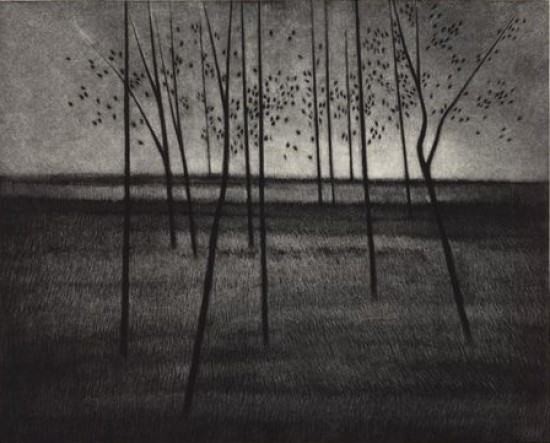 Robert Kipniss - Mezzotints - Trees, composed