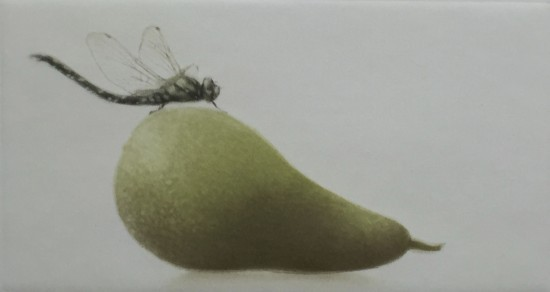 Mikio Watanabe - Drag-on fly