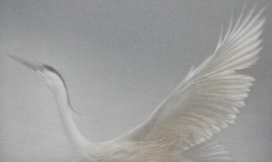 Mikio Watanabe - Heron I