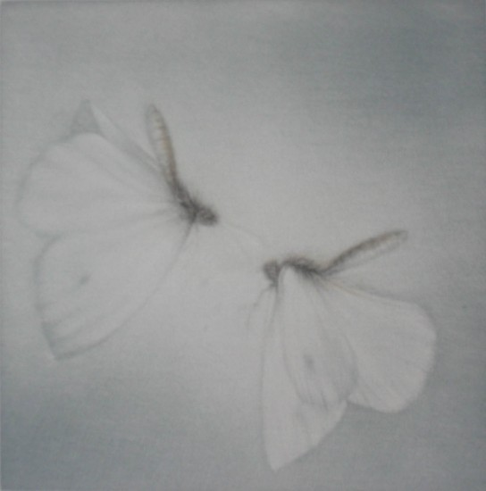 Mikio Watanabe - L'ete blanc