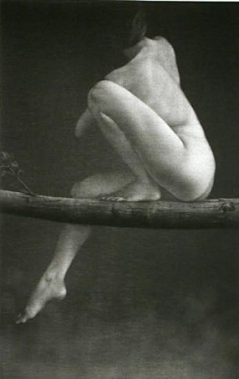 Mikio Watanabe - Sur la Branch
