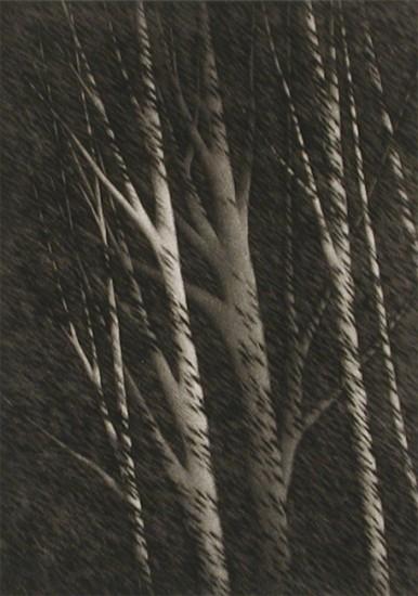 Robert Kipniss Intaglios - Prints - Nocturne w/ six trees, 2004